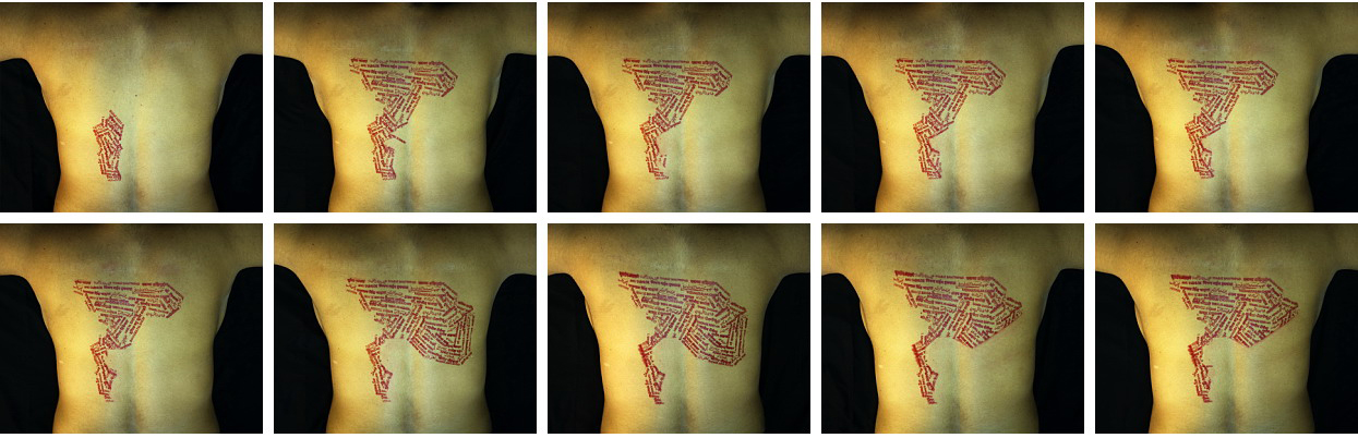 Reena Saini Kallat/Crease/Crevice/Contour (set of 10 prints)/Hahnemuhle Museum /2008